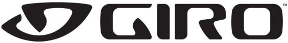 Giro Indicator/Skyla/Flume Visor Black