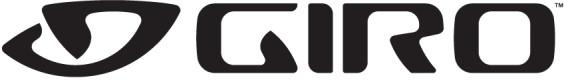Giro Cipher Visor Matt Titanium