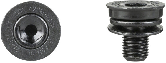 Trek-Diamant Prowheel Crankarm Bolts