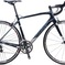 2016 Wilier GTR Team Athena Endurance L; Black/Grey